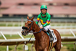 AUGUST 20, 2021: Aint Easy with Joel Rosario wins a maiden race at Del Mar Fairgrounds in Del Mar, California on August 20, 2021. Evers/Eclipse Sportswire/CSM