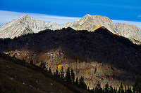 Lead King Basin in afternoon light