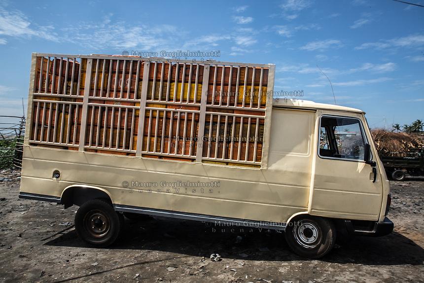 un camion carico di taniche di benzina A truck full of oil tanks Traffico illegale benzina dalla Nigeria al Benin