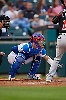 Buffalo Bisons catcher Beau Taylor (37) during an International League game against the Rochester Red Wings on August 26, 2019 at Sahlen Field in Buffalo, New York.  Buffalo defeated Rochester 5-4.  (Mike Janes/Four Seam Images)