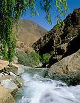 Morocco, High Atlas, near Setti Fatma at Toubkal National Park: Mountain stream in Ourika Valley | Marokko, Hoher Atlas, bei Setti Fatma im Toubkal National Park: Gebirgsbach im Ourika Valley