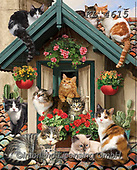 Interlitho-Simonetta, REALISTIC ANIMALS, REALISTISCHE TIERE, ANIMALES REALISTICOS, paintings+++++,cats,KL4615,#a#, EVERYDAY ,puzzle,puzzles