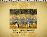 2015 Calendar - Birds of a Feather with photography by Chris Bidleman.<br /> Two sandhill cranes (Grus canadensis) are standing on a stream bank watching many other birds in the background flying with dried grass and tress in the background on a sunny day as seen at the Ridgefield National Wildlife Refuge.
