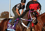 Shkspeare Shaliyah, trained by Doodnauth Shivmangal and to be ridden by Alex Solis , exercises in preparation for the 2011 Breeders' Cup at Churchill Downs on October 31, 2011.