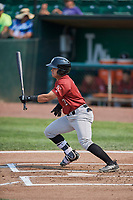 Julio Gonzalez (12) of the Idaho Falls Chukars bats against the Ogden Raptors at Lindquist Field on July 29, 2018 in Ogden, Utah. The Raptors defeated the Chukars 20-19. (Stephen Smith/Four Seam Images)