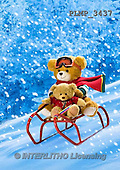 Marek, CHRISTMAS ANIMALS, WEIHNACHTEN TIERE, NAVIDAD ANIMALES, teddies, photos+++++,PLMP3437,#Xa# in snow,outsite,