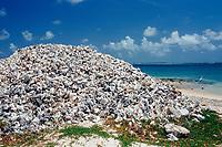 Conch houses on the beach, Netherland Antilles, Caribbean, Atlantic, Bonaire, Bonaire