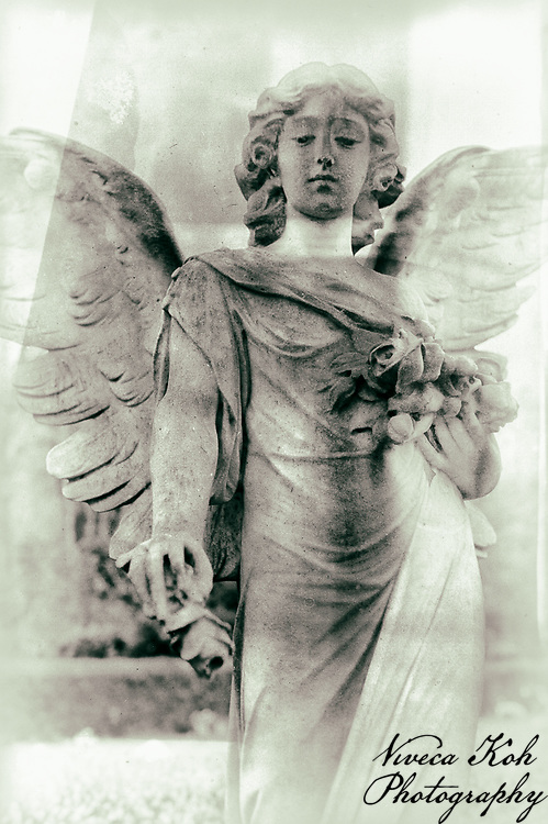 Memorials in Arnos Vale Cemetery in Bristol, processed to emulate wet plate technique.