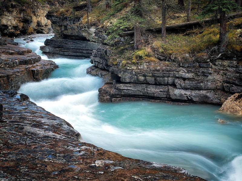 Stream in Beauty Creek. Jasper National Park, Aberta Canada