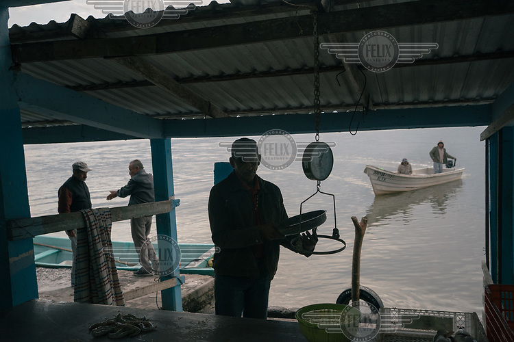 A merchant weighs shrimp while in the background fishermen talk as others arrive to sell their catch at the edge of a lagoon in Tamiahua, Veracruz.
