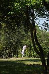 JARDINS ENFOUIS<br /> <br /> Conception : Patrice Barthès<br /> Interprétation : Sylvie Klinger, Louis-Clément Da Costa, Gill Viandier<br /> Cadre : Festival Uzes danse 2013<br /> Lieu : Parc du Duché<br /> Ville : Uzes<br /> 16/06/2013<br /> © Laurent Paillier / photosdedanse.com