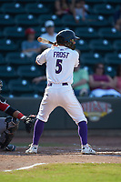 Tyler Frost (5) of the Winston-Salem Dash at bat against the Carolina Mudcats at BB&T Ballpark on June 1, 2019 in Winston-Salem, North Carolina. The Mudcats defeated the Dash 6-3 in game one of a double header. (Brian Westerholt/Four Seam Images)