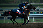 ARCADIA, CA  OCTOBER 26: Breeders' Cup Filly & Mare Turf entrant Castle Lady, trained by Henri Alex Pantall, exercises in preparation for the Breeders' Cup World Championships at Santa Anita Park in Arcadia, California on October 26, 2019. (Photo by Casey Phillips/Eclipse Sportswire/CSM)