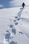 A winter hiker ascending the Air Line Trail in the White Mountains, New Hampshire USA during the winter months.