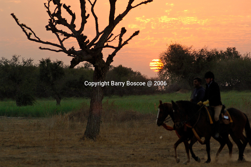 Early morning ride at sunrise over the desert of Rajasthan, India.