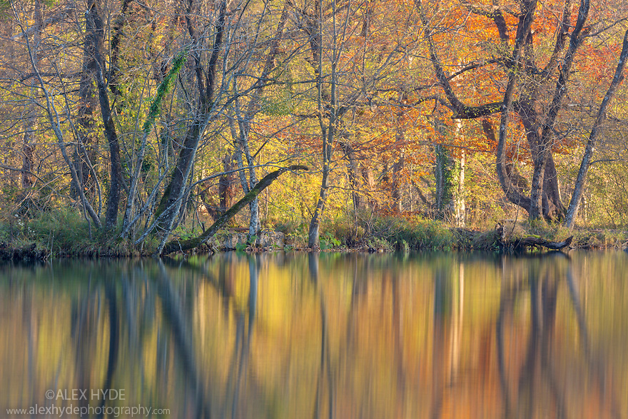 Autumnal reflections in the Upper Lakes, Plitvice Lakes National Park, Croatia. November.