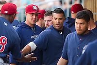 Tyson Gillies (13) of the Lehigh Valley IronPigs slaps hands with teammates after scoring a run against the Charlotte Knights at BB&T Ballpark on May 8, 2014 in Charlotte, North Carolina.  The IronPigs defeated the Knights 8-6.  (Brian Westerholt/Four Seam Images)