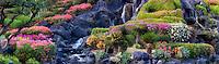Garden with waterfalls in Kauai, Hawaii.