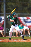Dartmouth Big Green catcher Adam Gauthier (18) at bat during a game against the Eastern Michigan Eagles on February 25, 2017 at North Charlotte Regional Park in Port Charlotte, Florida.  Dartmouth defeated Eastern Michigan 8-4.  (Mike Janes/Four Seam Images)