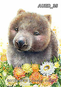 Carlie, REALISTIC ANIMALS, REALISTISCHE TIERE, ANIMALES REALISTICOS, paintings+++++,AUED35,#A#, EVERYDAY ,australian wildlife