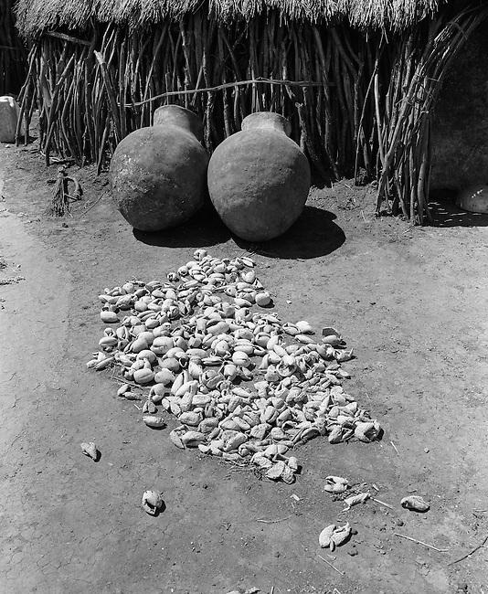 Karamoja, Uganda , Africa. - Village buildings  and grain bins