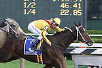 05 09 2009: 3 year old super filly Rachel Alexandra with Calvin Borel up beat older males in the 59th running of the $750,000 Grade 1 Woodward Stakes at Saratoga Racetrack, Saratoga Springs