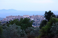 Lugnano in Teverina: This is a view of the historical center of the small town, with some green trees in foreground and the profile of the mountains in background. The photo is taken from the overhead mountain, on which basis is located instead the new part of the town, in the evening. The large white building in the top center is the town hall, on the top right there is the so-called citadel, whereas on the top left there are the other ancient buildings of the corso Umberto I (the main street). The evening light enhances the already enlightened street-lamps.