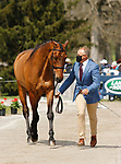 April 21, 2021: 71 Carlevo and rider Bruce Davidson Jr. from the USA in the first horse veterinary inspection at the Land Rover Three Day Event at the Kentucky Horse Park in Lexington, KY on April 21, 2021.  Candice Chavez/ESW/CSM