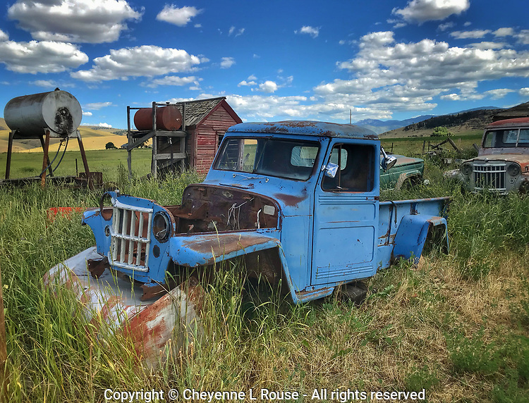 Blue Willys Jeep