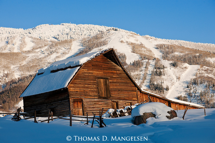 Evening light plays across the drifted snow in lengthening shadows, while still  highlighting the warm tones of the wooden planks of the Steamboat barn, standing sturdy below the Steamboat ski hill in Colorado.