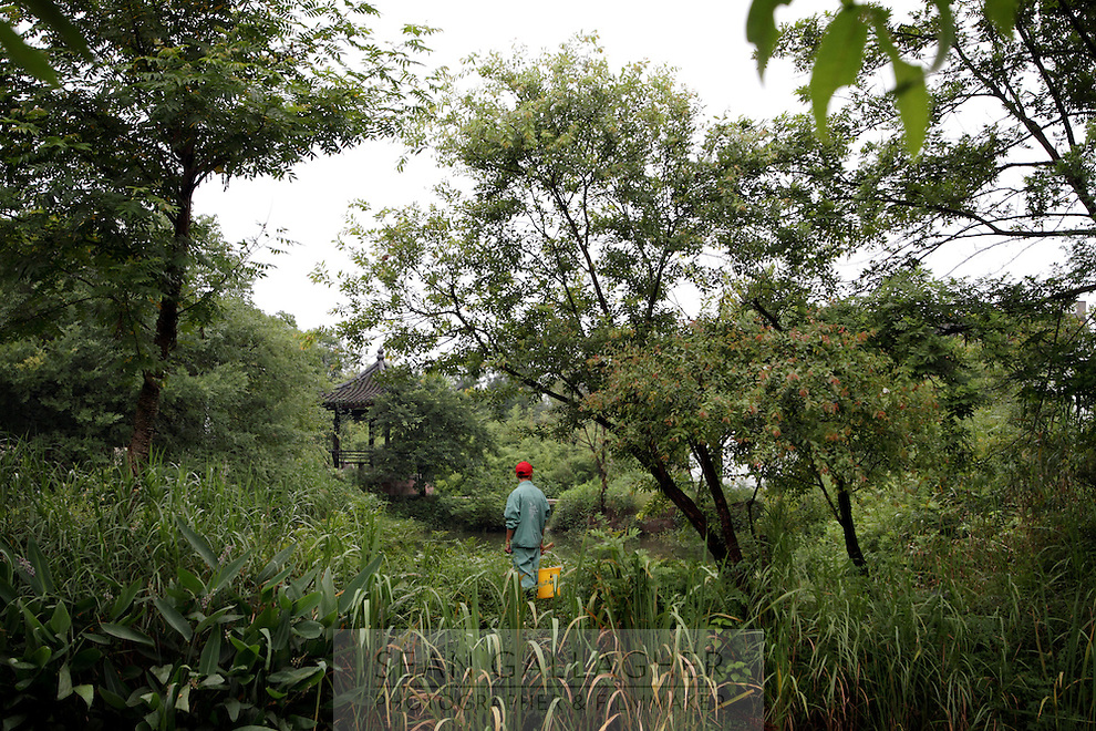 A worker inside the Xixi wetlands which lie in the west of the city of Hangzhou. This is China's 'first national wetland park,' dubbed as such to act as a role model to all other wetlands in China and to supposedly show how to effectively manage and restore wetlands, notably urban wetlands. Zhejiang Province. China. 2010