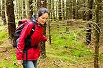 Scottish Wildcat (Felis silvestris grampia) biologist, Kerry Kilshaw, walking through coniferous forest, Scotland, United Kingdom