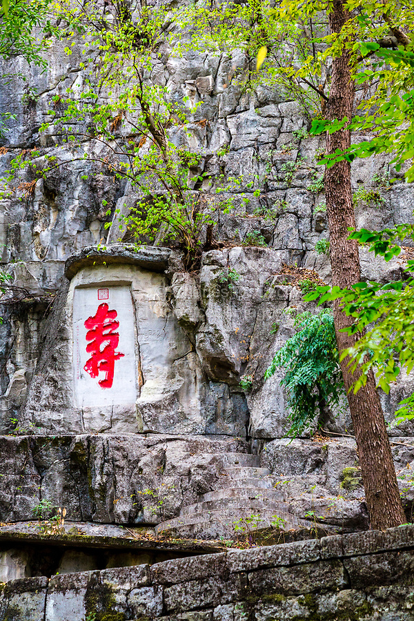 """Guilin, China.  Chinese Character for """"Longevity"""", Prince's City Compound."""