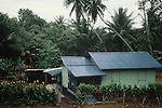 PALM TREES AND PLANTS ADORN HOME IN PULAU UBIN