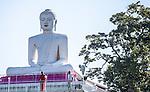 12 March 2015, Hatton, Uva Province, Sri Lanka: A massive statue of a Buddha in the tea country city of Hatton in Sri Lanka. Picture by Graham Crouch/The Australian Magazine