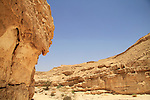 Lower Wadi Tzafit in the Negev