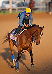 Eden's Moon during morning workouts for the 138th Kentucky Oaks at Churchill Downs in Louisville, Kentucky on May 3, 2012.