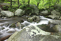"Blue Ridge National Park_Shenandoah National Forest (Click Thumbnails below to ""Add to Cart"")"