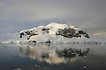 Andvord Bay. Croisière à bord du NordNorge. Péninsule Antarctique
