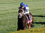 LEXINGTON, KY - APRIL 16: #8 Tepin and jockey Julien Leparoux win the 28th running of the Coolmore Jenny Wiley (Grade 1) $350,000 at Keeneland race course for owner Robert E. Masterson, and trainer Mark Casse.  April 16, 2016 in Lexington, Kentucky. (Photo by Candice Chavez/Eclipse Sportswire/Getty Images)