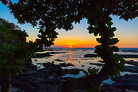 The sun sets over the horizon through the leaves of a tree in Puako, Big Island.