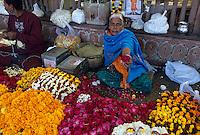Asie/Inde/Rajasthan/Jaipur: Tripolia Bazar - Le marché aux fruits - Marchande de fleurs