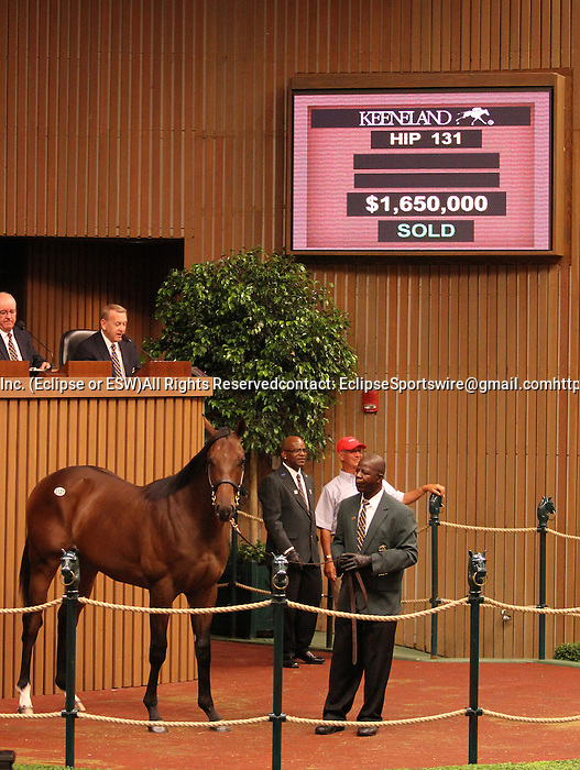Hip #131 Distorted Humor - Mushka colt leads the way at the Keeneland September Yearling Sale, when he sold for $1,650,000 to Shadwell Farm, consigned by Eaton Sales.  September 10, 2012.