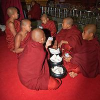 Myanmar, Burma.  Young Buddhist Monks Waiting for a Ceremony to Begin, Alodaw Pauk Pagoda, Nampan Village, Inle Lake, Shan State.
