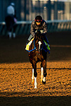 April 26, 2021: Super Stock gallops in preparation for the Kentucky Derby at Churchill Downs in Louisville, Kentucky on April 26, 2021. EversEclipse Sportswire/CSM