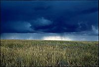Storm clouds over grassland<br />