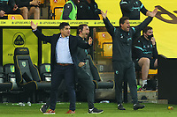 20th April 2021; Carrow Road, Norwich, Norfolk, England, English Football League Championship Football, Norwich versus Watford; Watford Manager Xisco and his backroom staff appeal for a free kick