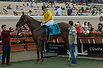 DEL MAR, CA  SEPTEMBER 1: #9 Vasilika, ridden by Flavien Prat,in the winners circle after winning the John C. Mabee Stakes (Grade ll), on September 1, 2018 at Del Mar Thoroughbred Club in Del Mar, CA.(Photo by Casey Phillips/Eclipse Sportswire/Getty ImagesGetty Images