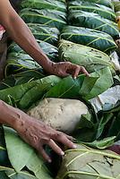 Breadfruit in Chuuk Micronesia