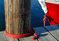 Boat tied to a dock, Vineyard Haven, Martha's Vineyard, Massachusetts, USA